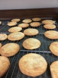 Baked and cooling, snickerdoodles have a glorious smell of fall.